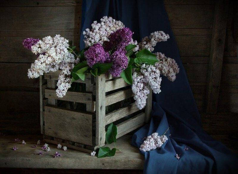 Piękna ozdoba ślubna, i nie tylko
